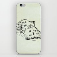 hippo iPhone & iPod Skins featuring Hippo by Julia Kisselmann