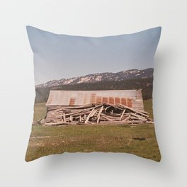 The Concluding Chapter Throw Pillow