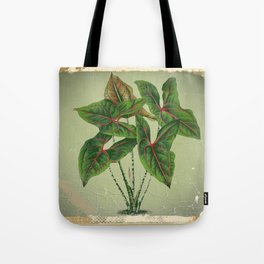 Grungy antique style  Botanical Art Tote Bag