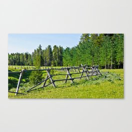 Beartrap Meadow Canvas Print