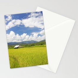 Rice fields in Thailand Stationery Cards