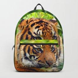 Blep Backpack