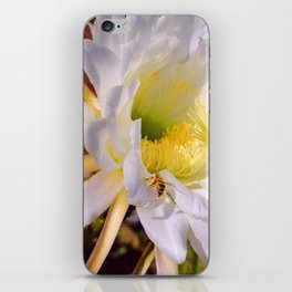 """Cactus Flower And Friend #1"" Photograph iPhone Skin"