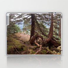 The roots Laptop & iPad Skin
