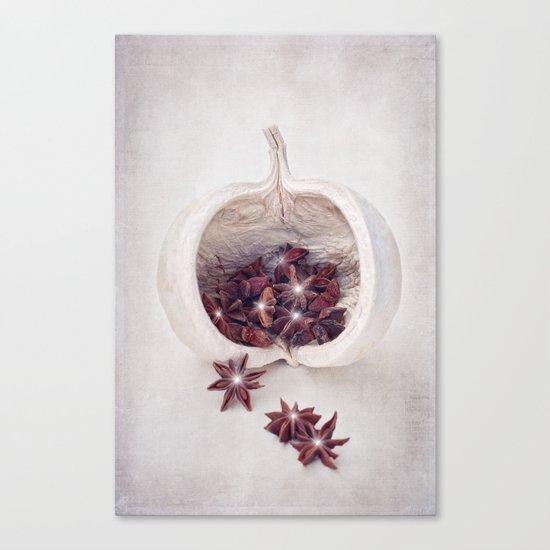 WINTER SECRETS Canvas Print