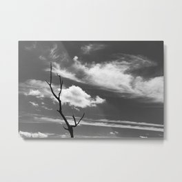 Black and white dead tree and sky with wispy clouds Metal Print