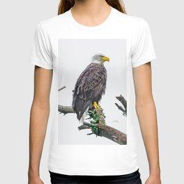 Bemidji Eagle II T-shirt