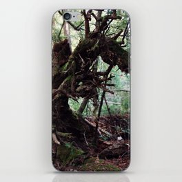 forest decomposition iPhone Skin