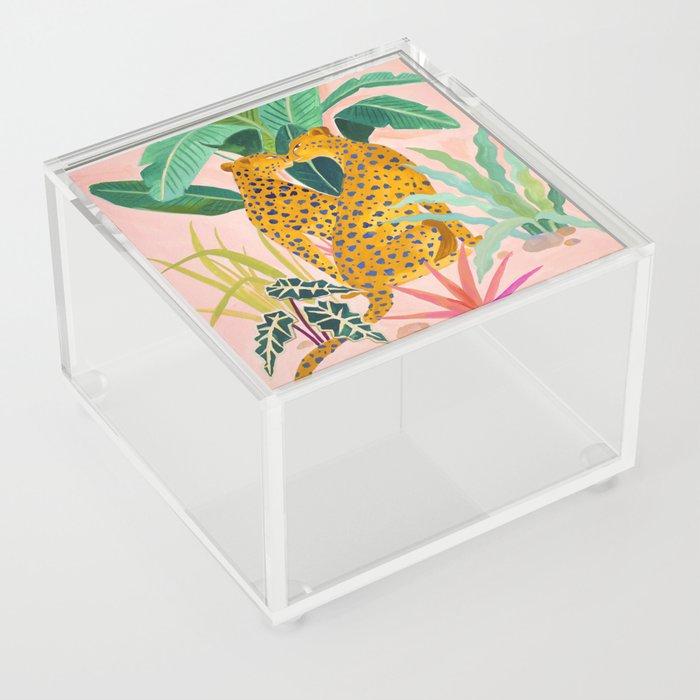 Cheetah Crush Acrylic Box
