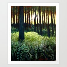 Ferns And Light Art Print