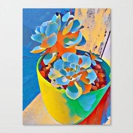 Succulent on the windowsill. Canvas Print