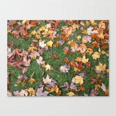 Fallen Foliage Canvas Print
