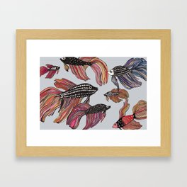 Betta Framed Art Print