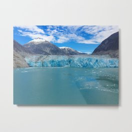 Endicott Arm Metal Print