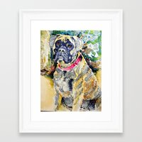 boxer Framed Art Prints featuring Boxer by Bowles Fine Paintings