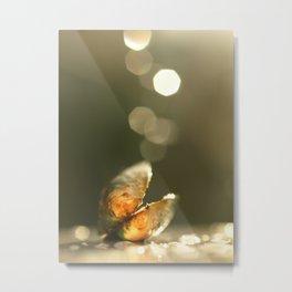 Mussel In The Bokeh Light... Metal Print
