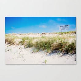 Visitors Welcome Canvas Print