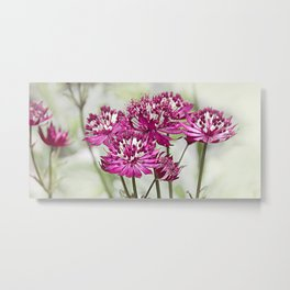 Pink Flowers in the Mist Metal Print