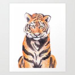 Watercolor Tiger Art Print