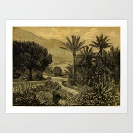 The Gardeners' Chronicle 1874 Art Print