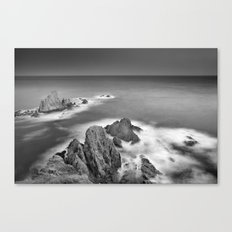 The Reef Canvas Print