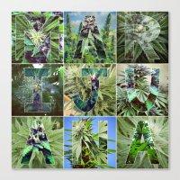 marijuana Canvas Prints featuring Marijuana Collage by Beautiful Buds 420