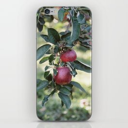 The Apple Orchard No. 2 iPhone Skin