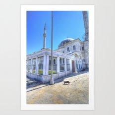 Istanbul Mosque Cat Art Print