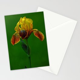 The Wise Iris Stationery Cards