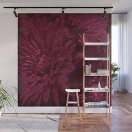 Burgundy Chrysanthemums Wall Mural