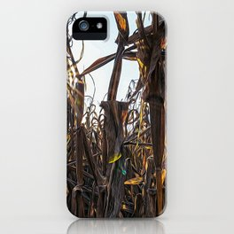 Corn field at sunset in the countryside of Lomellina iPhone Case