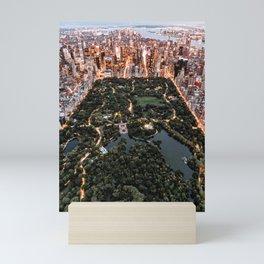Central Park New York Mini Art Print