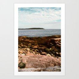Coastal Life #1 - New England travel photograph - sea and nature art Art Print