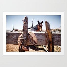 Horsehoe Blur Art Print