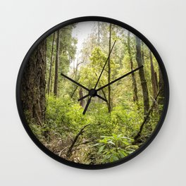 Schrader Old Growth Forest Wall Clock
