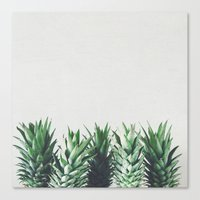 Canvas Prints featuring Pineapple Leaves by Cassia Beck
