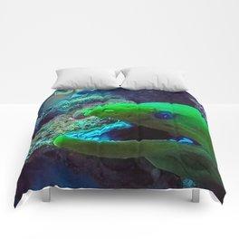 Moray Eel Comforters