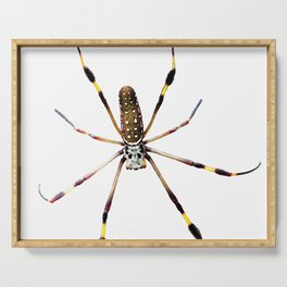 Watercolor Spider, Golden Orb-weaver Snow Serving Tray
