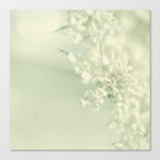 White Blooms Canvas Print