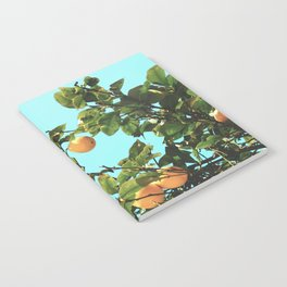 Summer Orange Tree Notebook