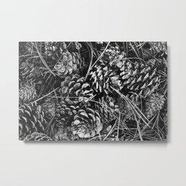 Pine Cone Pileup Metal Print