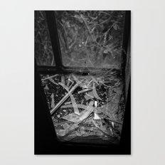 broken glass Canvas Print