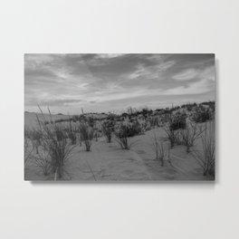 Dune Grasses Metal Print