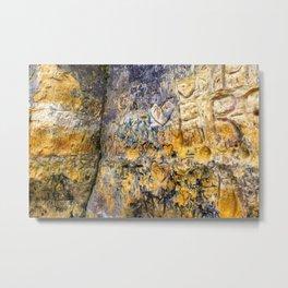 Sandstone Carving Craving Metal Print