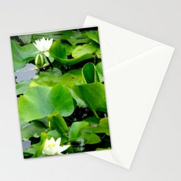 Waterlily #2 Stationery Cards