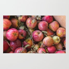 Pile of freshly picked organic farm apples with imperfections Rug