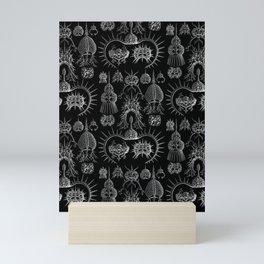 Ernst Haeckel - Spyroidea Mini Art Print
