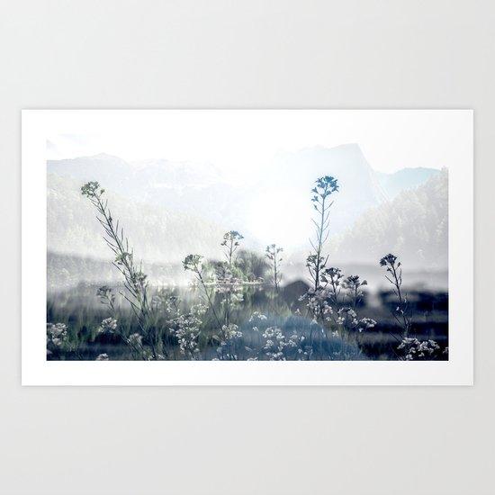 Mountain Bloom Art Print