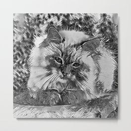 AnimalArtBW_Cat_20170907_by_JAMColorsSpecial Metal Print