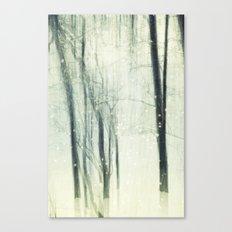 Winter Dream Canvas Print